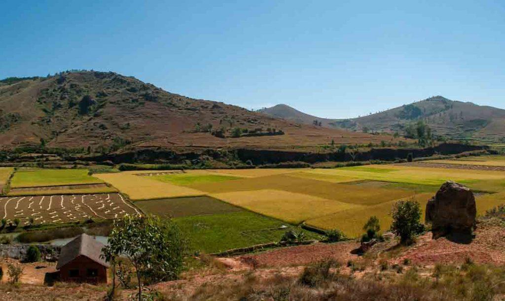 Madagascar : coté terre et campagne